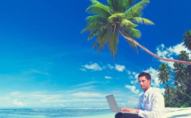 Študij informatike vam bo omogočil lagodno življenje. Foto: Internet