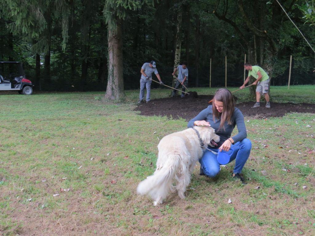 FOTO:Pasji park že urejajo v Arboretumu, kmalu botudi v Šiški