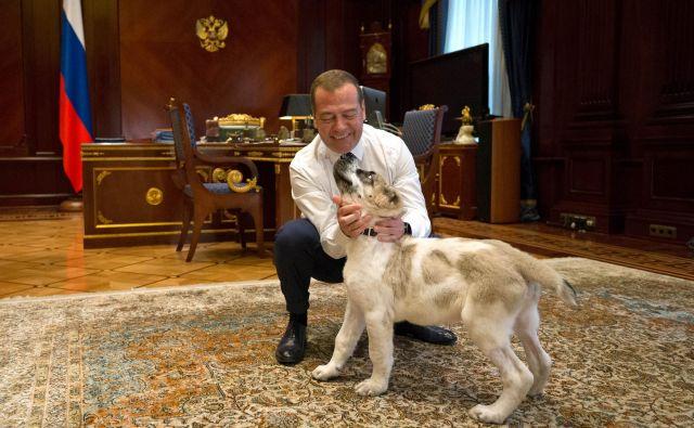 Slovensko vladno delegacijo bo v Moski sprejel predsednik ruske vlade Dmitrij Medvedjev. FOTO: Reuters