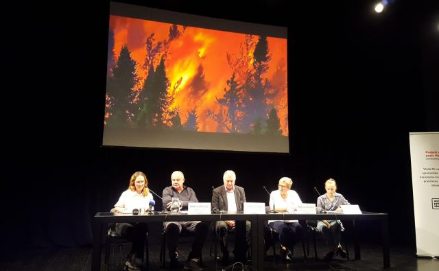 Svet gori, podnebne krize pa vrhovi držav ne prepoznajo. FOTO: Borut Tavčar/Delo