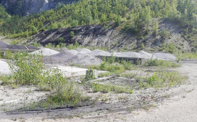 Devet milijonov kubičnih metrov pepela so v preteklosti odložili v Trbovljah, oblast ga želi še več. Foto Osebni arhiv J. P.