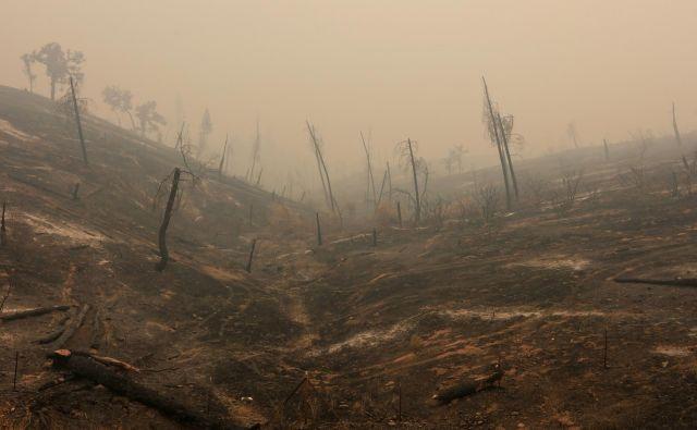 Če bomo prehitro uničili ta svet, se ne bomo imeli kam odseliti. FOTO: Bob Strong/Reuters