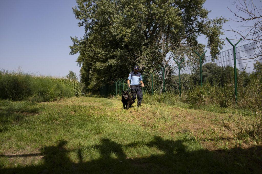 Novinar osumljen tihotapljenja migrantov