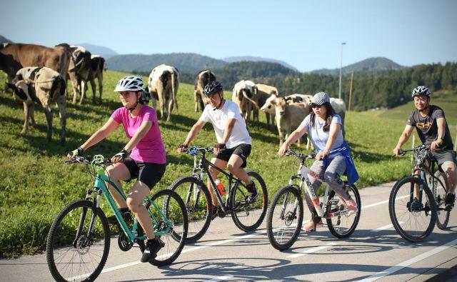 Dokaz, da so se kitajski sodelavci lepo navzeli slovenskih navad. Ne le kolesarjenja, ampak predvsem aktivnega preživljanja prostega časa. FOTO: Jure Eržen/Delo