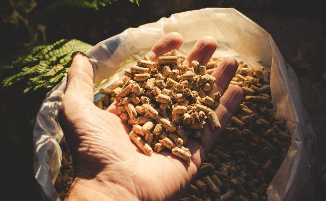Letos so na Gozdarskem inštitutu Slovenije v sodelovanju z Zvezo potrošnikov Slovenije (ZPS) izvedli peto analizo kakovosti lesnih peletov, ki so naprodaj na slovenskem trgu. Foto Shutterstock