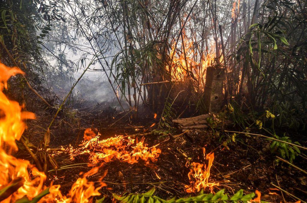 V Indoneziji bo še gorelo