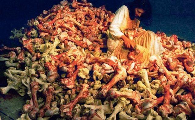 <em>Balkanski barok</em>, performans, v katerem je Marina Abramović na Beneškem bienalu leta 1997 štiri dni čistila kravje kosti, s čimer je opozorila na vojno v Jugoslaviji. FOTO: Beneški bienale