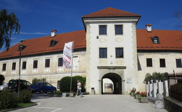 Metliški grad je bil do konca 19. stoletja v lasti Josipa Savinška. Leta 1899 je svoje premoženje prodal in lastnik se nikoli več ni vrnil v Metliko. FOTO: Bojan Rajšek/Delo