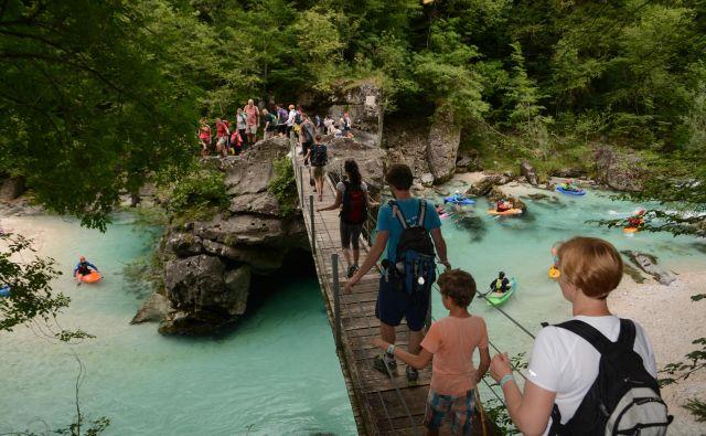 Slovenski del poti od Alp do Jadrana na leto prehodi približno 5000 pohodnikov. Foto: Janko Humar