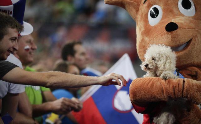 Koder je bil v Stožicah uradni pomočnik maskote prvenstva, veverice Ace. FOTO: Uroš Hočevar