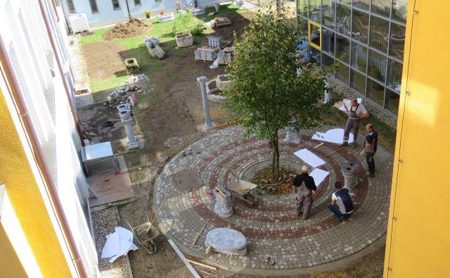 Na eni od ptujskih osnovnih šol nastaja rimski botanični vrt Foto Ptujinfo