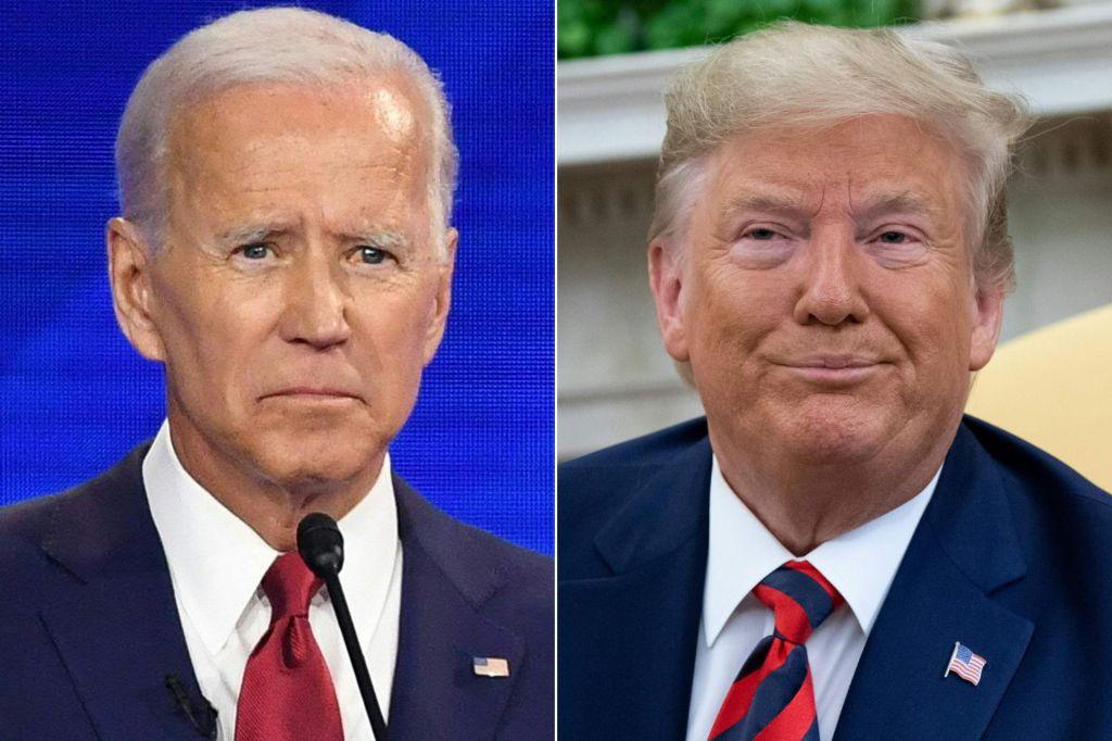 FOTO:Kdo krade ameriške volitve?