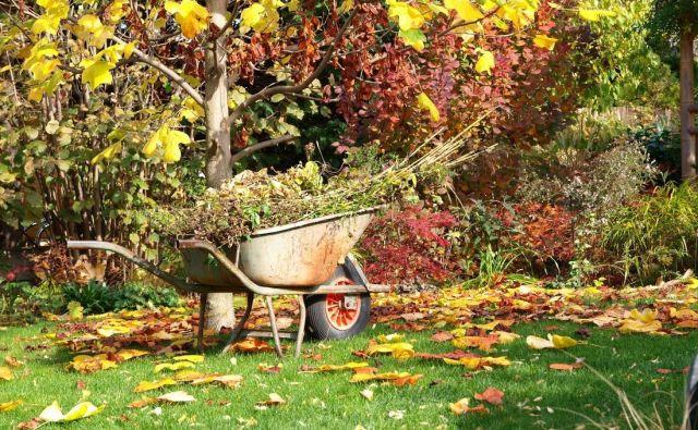 Oktobra bodo razmere na vrtu močno odvisne od naklonjenosti vremena. FOTO: Shutterstock