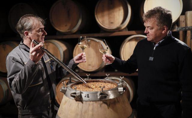 Klet Brda je največji izvoznik slovenskih vin. Foto Uroš Hočevar