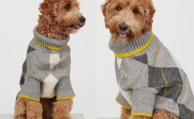 Modna hiša H&M je napovedala, da bodo lastniki s toplimi puloverji lahko razveselili tudi svoje pse. FOTO: H&M