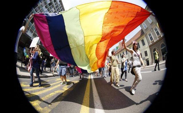 Kakor si pred dvajsetimi leti nihče ni predstavljal, da bodo podeželske šole izobešale mavrične zastave in se zavzemale za transspolne dijake, si danes težko predstavljamo, da bi čez dvajset let naši parlamenti lahko sprejemali le še okoljsko neoporečne zakone. FOTO: Uroš Hočevar/Delo
