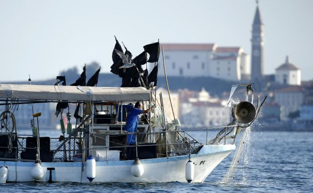 Na julijski ustni obravnavi so se sodniki veliko ukvarjali z domnevnimi hrvaškimi kršitvami ribiške politike EU. FOTO: Matej Družnik/Delo