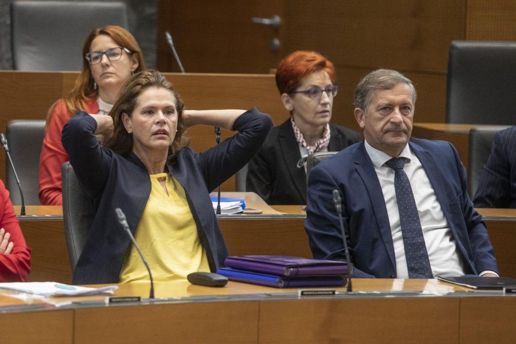 Koalicija za zdaj pogasila nesoglasja in posvojila Desusov amandma