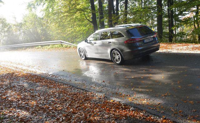 Odpadajoče listje, mokra cesta in nasprotna nizka svetloba so nekatere od nevarnosti jesenske vožnje.<br /> Foto Gašper Boncelj