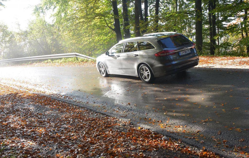 FOTO:Jutranja megla in odpadajoče listje – recept za spolzko cesto