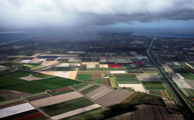 An aerial view of tulip fields in Den Helder, Netherlands April 22, 2017. Picture taken April 22, 2017. REUTERS/Cris Toala Olivares - RC1251B4F800 Foto Cris Toala Olivares Reuters