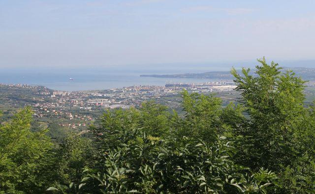 Občina je na dražbo umestila tudi zemljišča s pogledom na Koprski zaliv. FOTO: Tomi Lombar/Delo