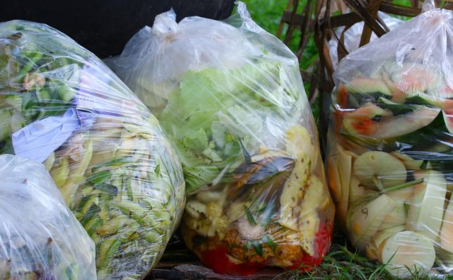 Lani je Komunala Idrija v Cerknem zbrala 71.449 kilogramov bioloških odpadkov. FOTO:: Shutterstock