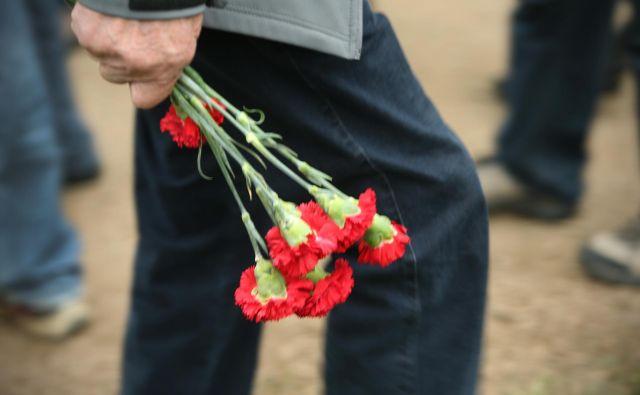 Poleg krizantem na grobove najraje nosimo nageljne. Foto Jure Eržen/delo