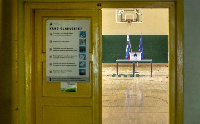 »Določitev volilnega sistema je ena najpomembnejših sestavin politike.« Foto Voranc Vogel