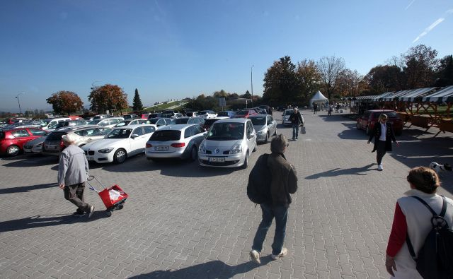 Vozniki na severnem delu Žal parkirajo na neoznačenih parkirnih mestih, območje pa je delno tlakovano, večino pa makadamsko. Foto Mavric Pivk
