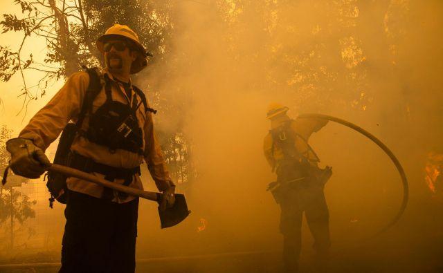 Največji požar divja na severu Kalifornije v bližini kraja Geyserville. FOTO: Philip Pacheco/Afp