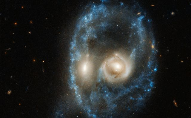 Sistem Arp-Madore 2026-424 (AM 2026-424) spominja na obraz. FOTO: NASA, ESA, J. Dalcanton, B.F. Williams, and M. Durbin (University of Washington)