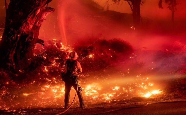 Neumornim gasilcem je uspelo omejiti požar Kincade, ki divja severno od San Francisca in je pregnal od doma okoli 180.000 ljudi. Večina se jih je že vrnila. FOTO: AFP