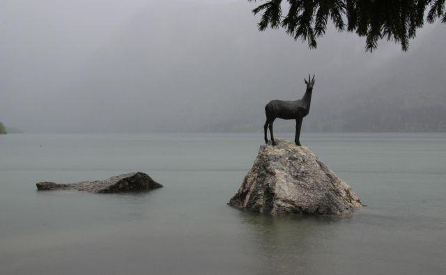V zaledju jezera je v tem času ponekod padlo tudi več kot 400 milimetrov dežja. FOTO: Špela Ankele/Delo