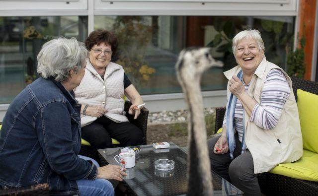 Težav in priložnosti sodobne (starajoče se) družbe se moramo zavedati: od raznih bolezni do osamljenosti in seveda potreb, da si med seboj pomagamo in smo povezani. Foto Voranc Vogel