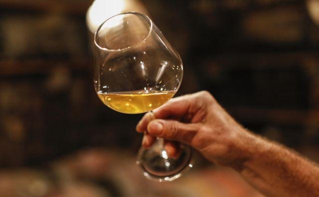 Martinovo pomeni simbolen zaključek vinogradnikovega truda v vinogradu in je namenjeno predstavitvi vinogradnikov, vinarjev ter njihovega mošta in mladih vin. FOTO: Uroš Hočevar/Delo