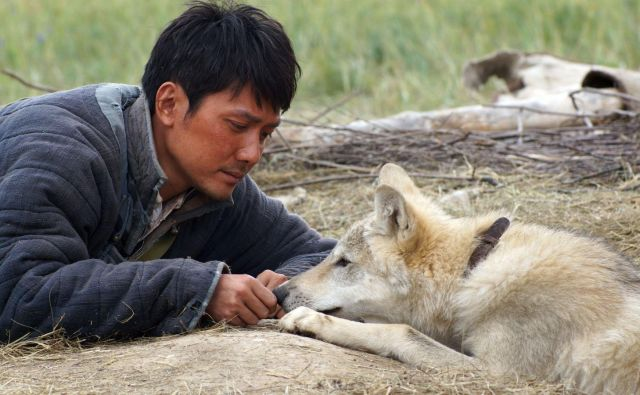 Le dernier loup - Volčji totem Foto TVS