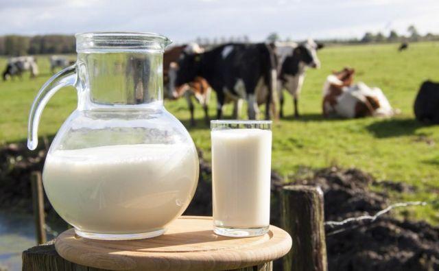 Ker mleko glede na razgradnjo vsebuje »hitre« (sirotka) in »počasne« (kazein) beljakovine, je pri zaužitju mleka po vadbi moči stimulirana sinteza beljakovin v mišicah, hkrati pa počasneje delujoče beljakovine upočasnjujejo njihovo razgradnjo. Foto. Shutterstock