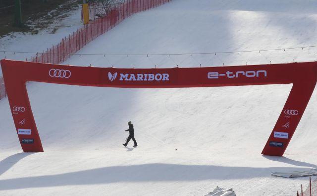 Na Pohorju so se začele priprave za zlato lisico. FOTO: Tadej Regent
