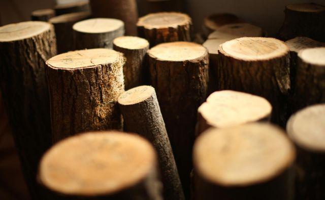 Kurjenje drv je najcenejše, a zahteva nekaj dela, poleg tega onesnažuje zrak. FOTO: Jure Eržen/Delo