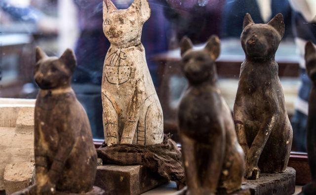 Kipci mačk, ki so imele v Egiptu poseben status. FOTO: Khaled Desouki/AFP