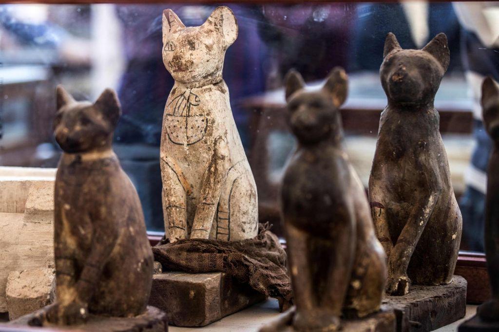 FOTO:Mumificirane živali nekdanjih Egipčanov