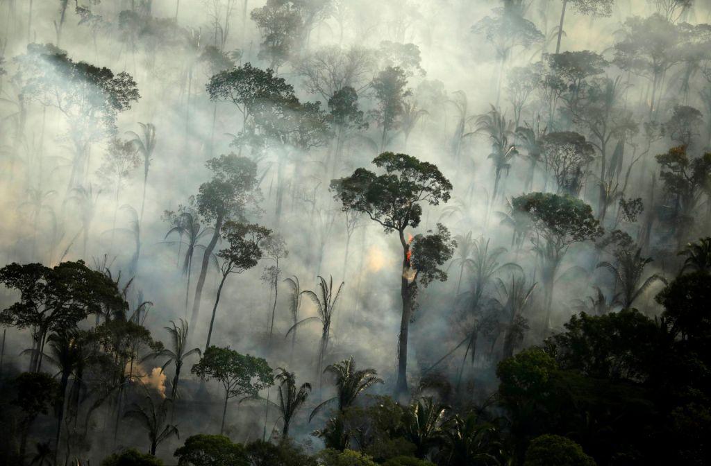 FOTO:Za spopad s podnebno in okoljsko krizo moramo obrniti vsak kamen