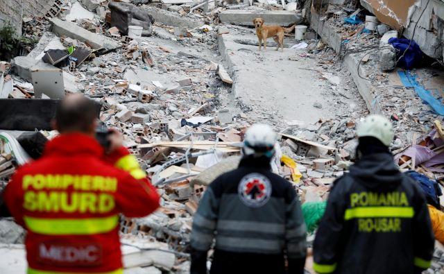 Morebitne preživele pod ruševinami iščejo z reševalnimi psi. FOTO: Florion Goga/Reuters