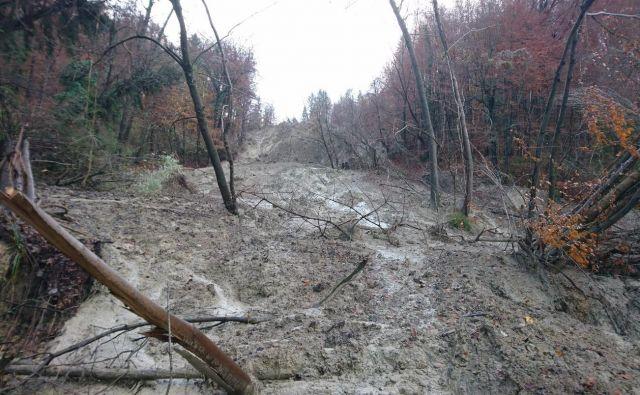 Plaz je prizadel okoli sedem hektarov gozdnih površin ter tri hektare travnatih površin. Po prvih opravljenih ogledih so ocenili, da se razteza v dimenzijah 600 krat 120 metrov. Globok je dva metra. FOTO: Občina Laško