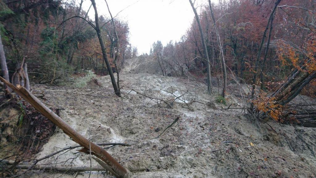 Plaz, ki ogroža naselje Stopce, se še širi