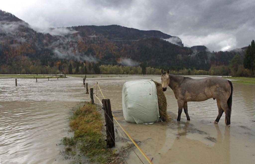 FOTO:Za nami je desetletje vročinskih valov in ekstremnega vremena