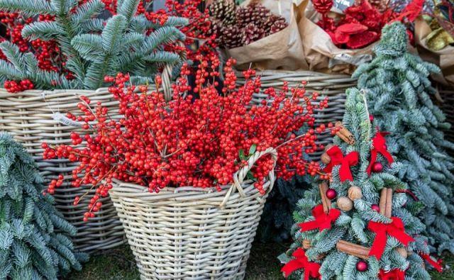 Pomemben del božično-novoletne dekoracije so zimzelene vejice in rdeči okraski. FOTO: Shutterstock
