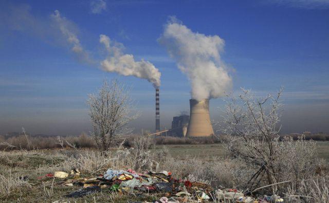Emisije je treba zmanjšati, s sajenjem dreves in drugimi naravnimi načini zajemanja ogljika teh zavez ne smemo zmanjševati. FOTO: Hazir Reka/Reuters