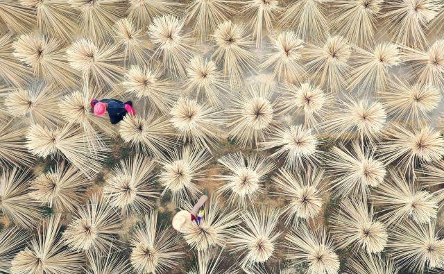 Vaščani sušijo bambusove izdelke za izdelavo kitajskih palčk za uživanje hrane v okrožju Lijiang, v kitajski provinci Jiangxi. FOTO: Stringer/Reuters